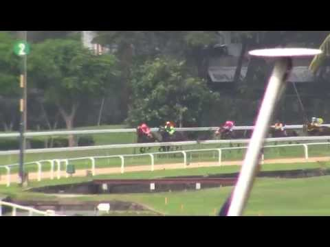 Thailand Horse Racing Royal Bangkok Sports Club