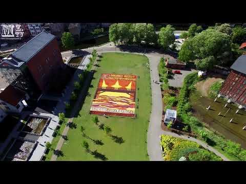 2018-05-06 - Lot Dronem W Bydgoszczy Na Wyspie Młyńskiej - Dywan Kwiatowy Z Lotu Ptaka