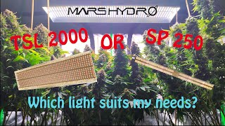Mars Hydro TSL2000 or SP250? Which Mars Hydro full spectrum LED do you need?