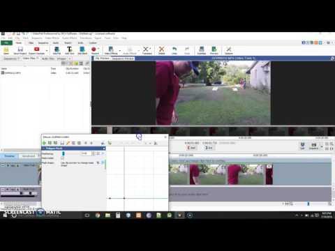 Videopad Video Editor Software | Blur Face Tutorial
