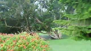 Victoria Park at Nuwara Eliya Sri Lanka.