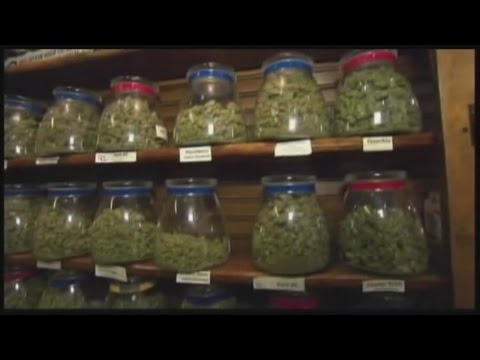 Cocchi asks state officials to increase tax on recreational marijuana