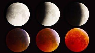Total Lunar Eclipse 2019 🌒 Blood Moon