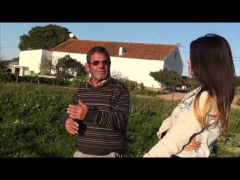 The Eating Tales Episode 2: Shake the Hand that Feeds You - Portugal