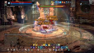 Tera Online - Golden Labyrinth (Solo Valkyrie) Full Quest. Lvl 55