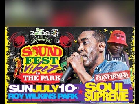 Irish & Chin Sound Fest 2016 Roy Wilkins Park ( Soul Supreme & Massive B )