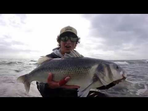 Edge Of England - Fly Fishing For Bass