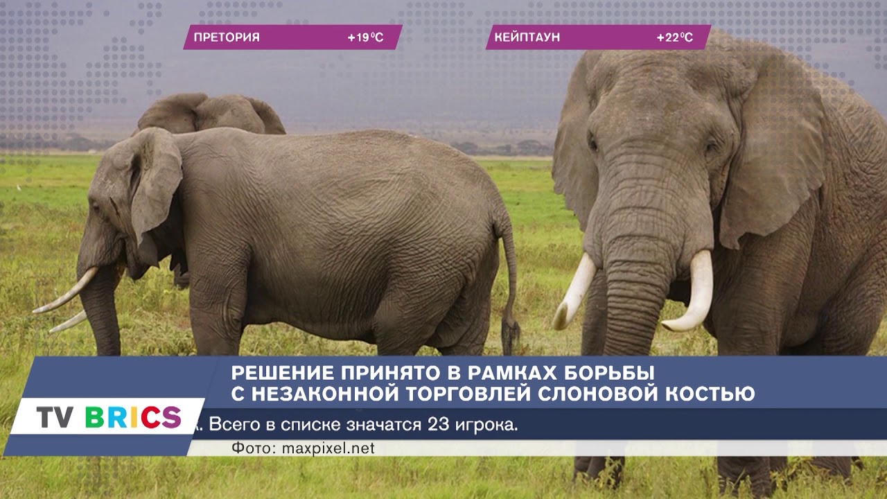 самые свежие новости россии и в мире