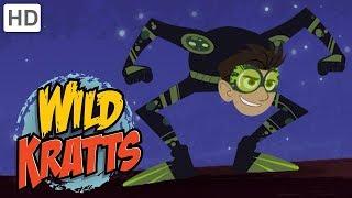 Wild Kratts - Creatures in the Dark 🌙 | Kids Videos
