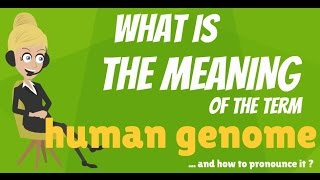 What is HUMAN GENOME? What does HUMAN GENOME mean? HUMAN GENOME meaning, definition & explanation
