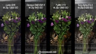 Lumix GH5 vs Olympus EM1 II vs Fujifilm XT2 vs Sony A7s II 4k movie quality