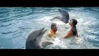 Aaj Dil Gustaakh Hai - Blue 2009 Hindi Movie