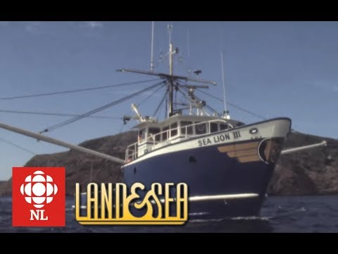 Land & Sea: Wooden Vs Steel-hulled Long Liners