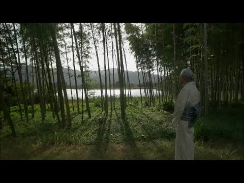 つむぎの思想 ―志村ふくみの世界