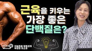 근육을 키우는 가장 좋은 단백질은? [#동물성단백질 #…