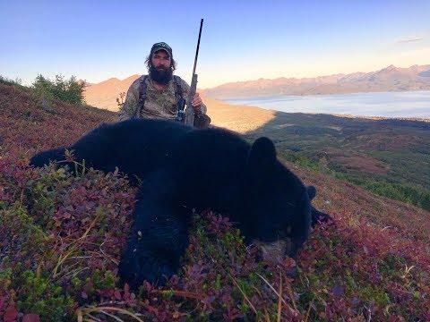 Epic Alaskan Black Bear!! - Limitless 50