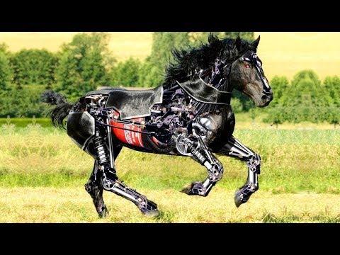 जानवरों के 9 सबसे अजीबोगरीब रोबोट   9 Advanced & Futuristic Animal Robots That Exist In Real World