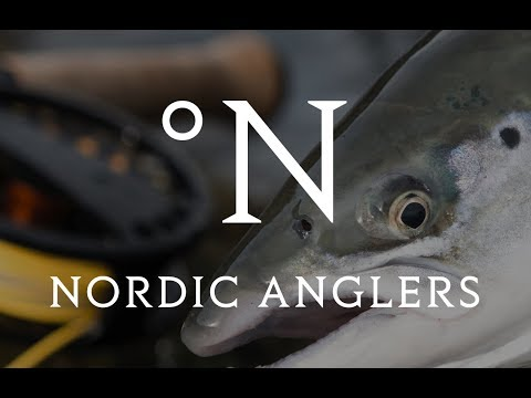 BIG NEWS! New name, new shop and The Danish Flyfestival