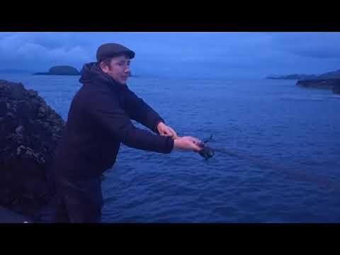 Fishing For Pollock, Ballintoy, Ireland.