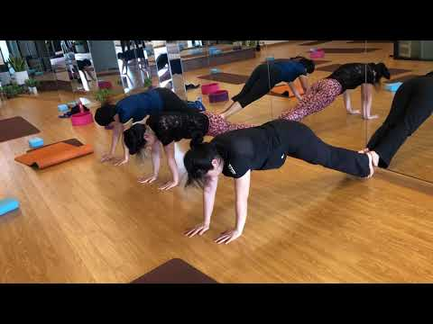 How To Make Arm Strength | Arm Strength| praveenyoga
