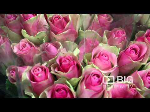 Flowers Everywhere Florist Shop in Richmond SA offering Flower Design and Bouquet