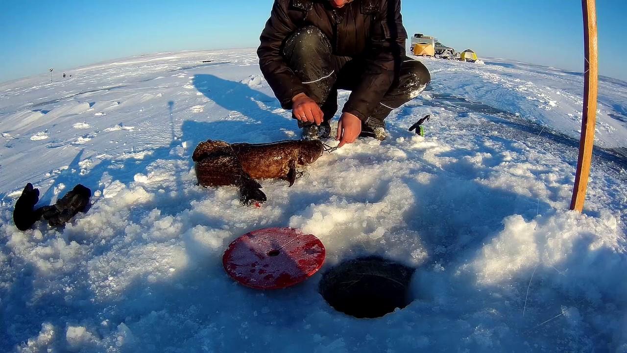 озеро парное зимняя рыбалка 2018