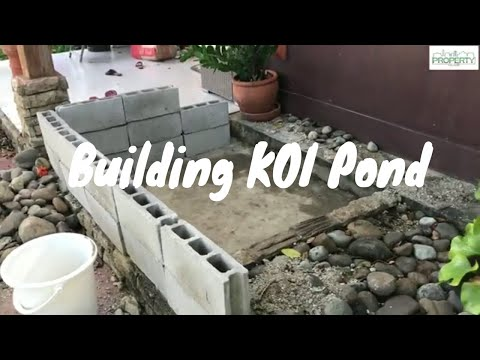 Building Koi Pond