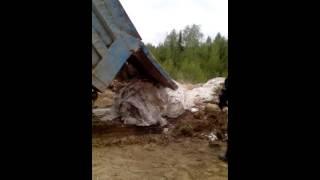 Свалка мусора в запретном месте(Работники одного из усинских мероприятий были застигнуты за выбросом мусора в неположенном месте., 2016-05-29T22:03:46.000Z)
