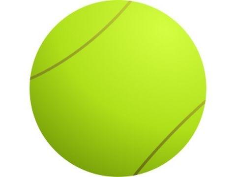 Novak Djokovic Defeats Rafael Nadal In the 2011 Sony Ericsson Open Final -- Tennis Report