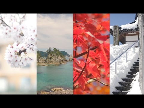 Best Season to Visit Japan