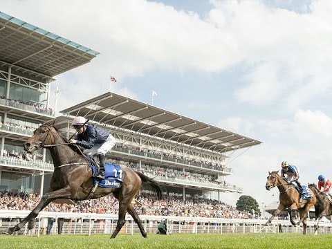 Races in Focus: Wednesday at York