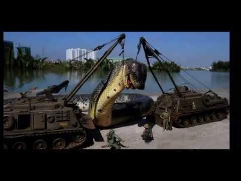 คลิป #  กองทัพ..ถล่มงูยักษ์..ใหญ่ที่สุดในโลก #