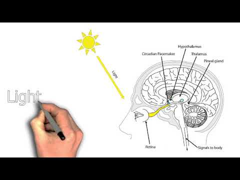 Why Am I Still Tired After a Full Night's Sleep?
