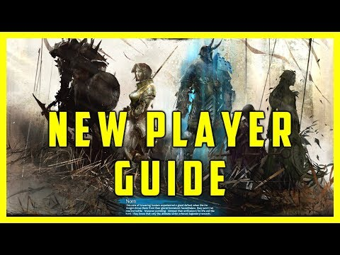 Guild Wars 2 New Player Guide 2017