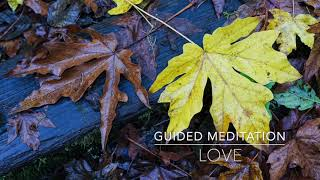 LOVE: 15 Minute Guided Meditation | A.G.A.P.E. Wellness