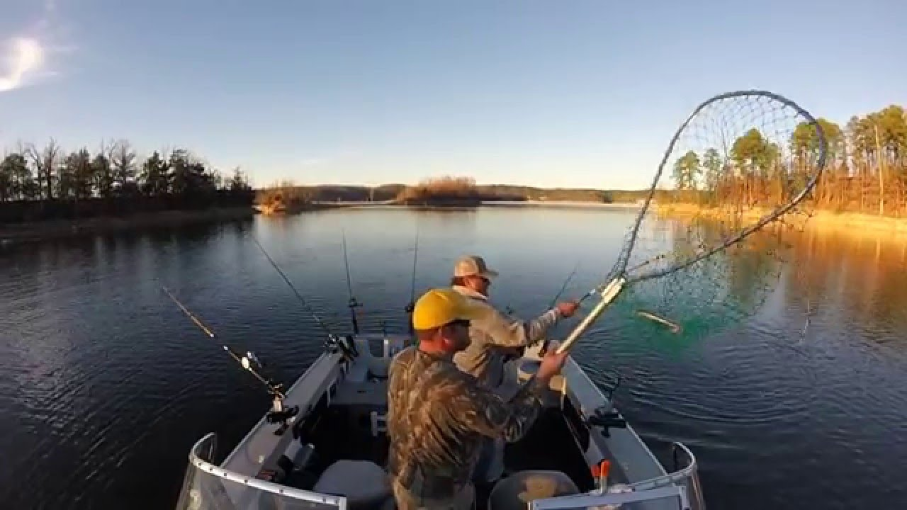 Beaver lake arkansas striper madness fall 2015 youtube for Beaver lake striper fishing