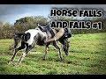 Horse falls and fails #1