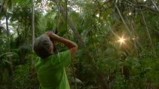 Lindblad Panama Canal & Costa Rica Cruise Vacations,Videos