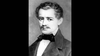 Play Eisele- Und Beisele-Sprünge, Polka For Orchestra, Op. 202
