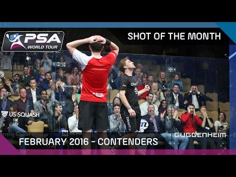Squash: Shot of the Month - Feb '16 Contenders