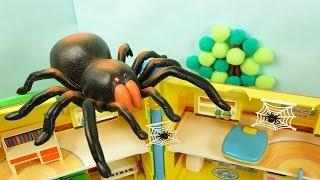 초대형거미와 거미마왕의 습격★뽀로로 장난감 애니 (Save Pororo from Big Spider)