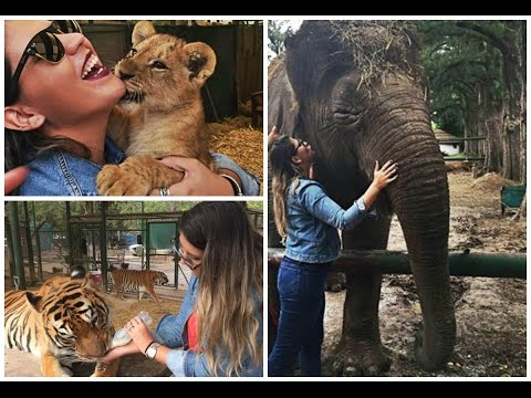 Vlog de Viagem: Buenos Aires #5 Zoo de Luján