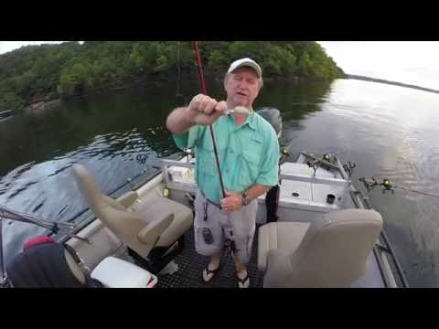Trolling Crankbaits For Crappie On Lake Of The Ozarks #4 (8-20-16)