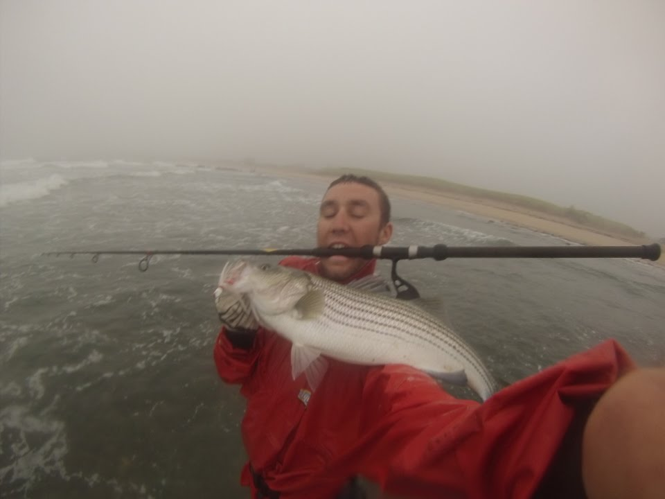 Striped Bass surf casting Montauk South Side