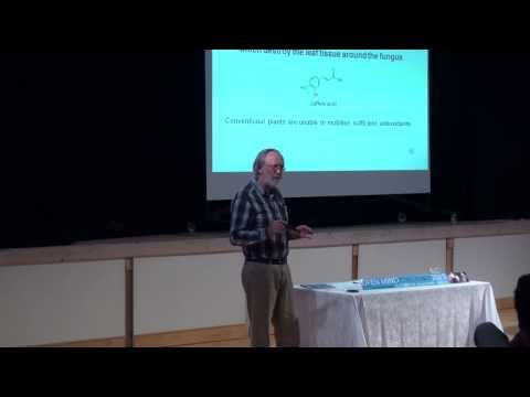 Bio-Food vs Industrial Food,  Jens-Otto Andersen
