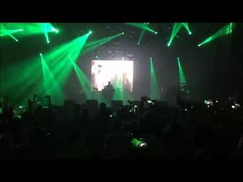 Kendrick Lamar - Money Trees Kraków Live Festival 2015