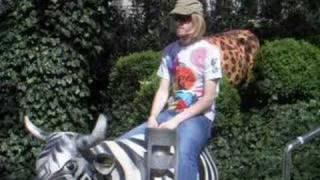 day 15: zebra-cow sit
