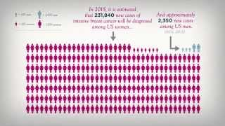 2015 Breast Cancer Incidence