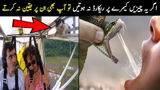 If These Were Not Recorded No One Would Believe | اگر یہ ریکارڈ نہ ہوتا کوئی بھی یقین نہ کرتا | NYKI