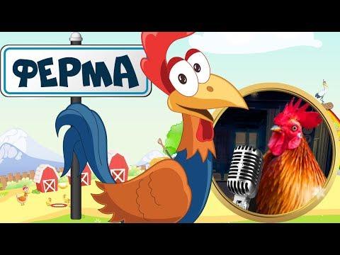 ФЕРМА! Реальные звуки животных! ДОМАШНИЕ ЖИВОТНЫЕ на ферме для малышей! Учим животных на русском